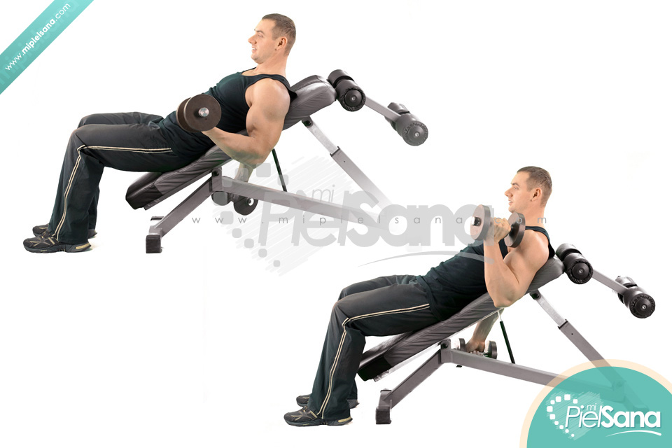 Dumbbell Bicep Curl Incline Bench 28 Images Incline