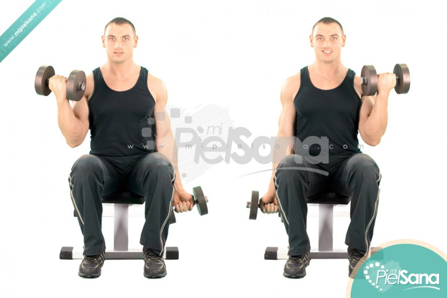 Alternate Seated Dumbbell Curl