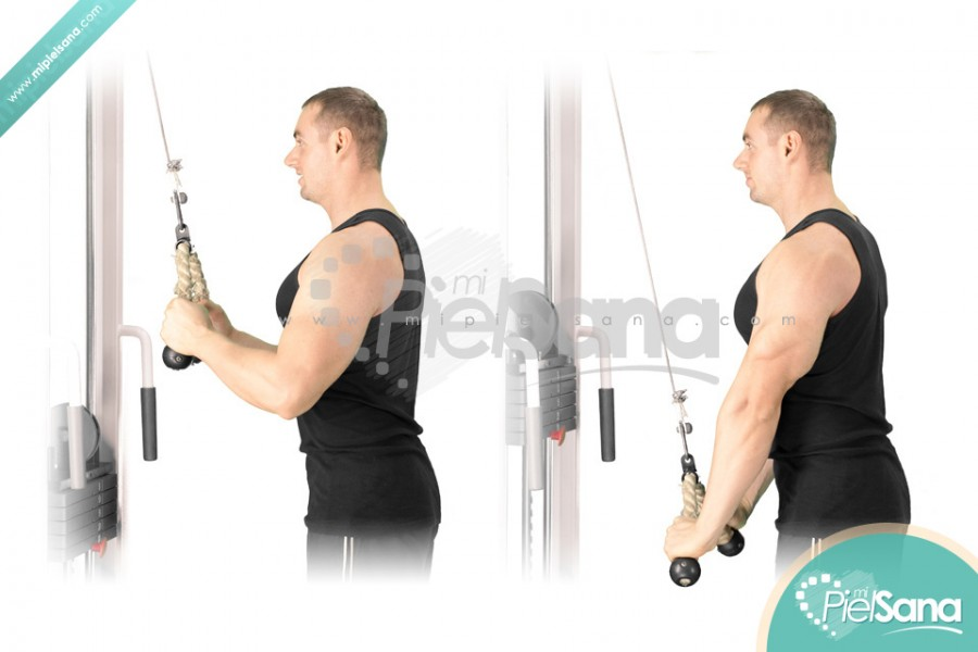 Cable Tricep Extension With Rope