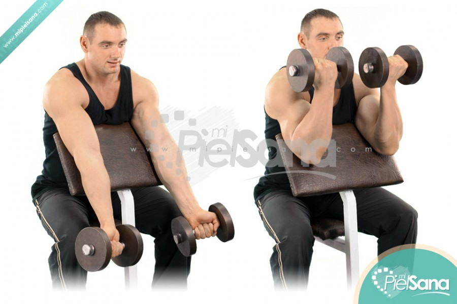 Dumbbell Preacher Curl
