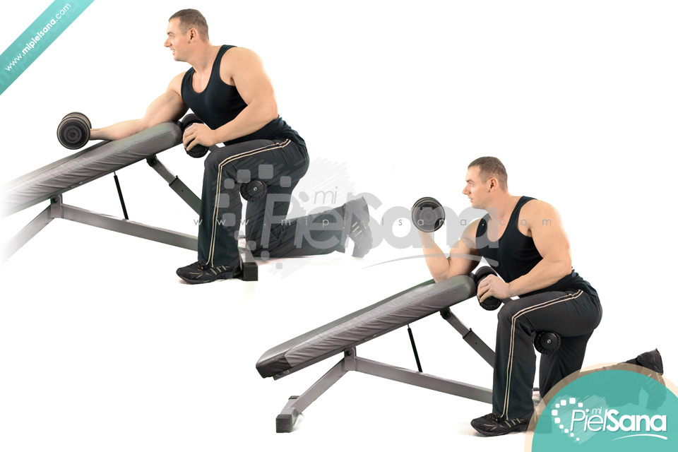 incline bench dumbbell curl - 28 images - the incline ...