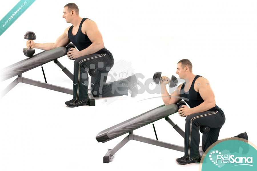 Incline Bench Hammer Curl