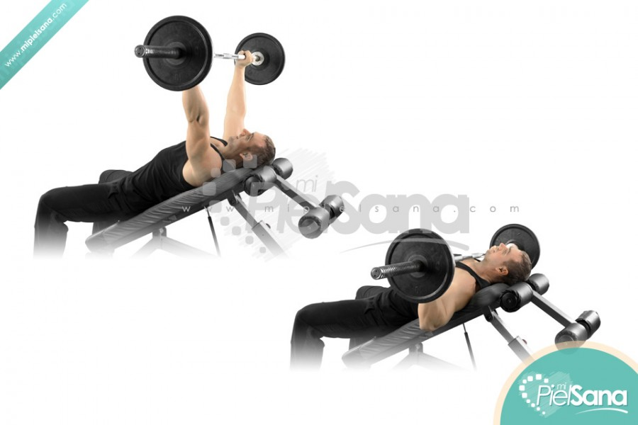 Incline Bench Press 28 Images Barbell Incline Bench