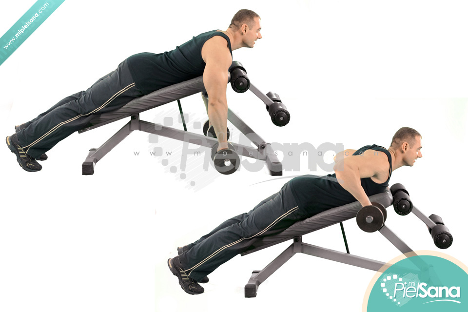 Incline Bench Two Arm Dumbbell RowIncline Dumbbell Row