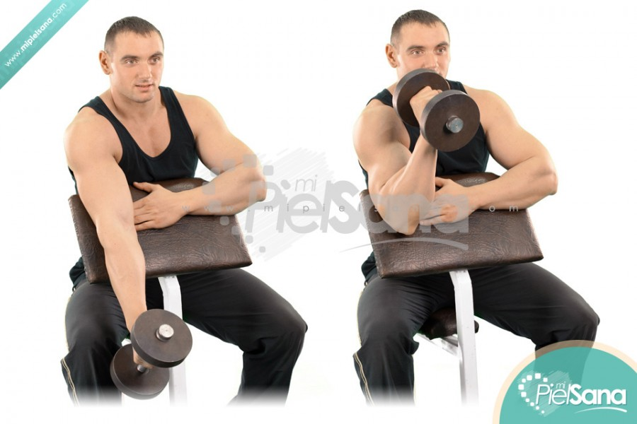 One Arm Dumbbell Hammer Preacher Curl