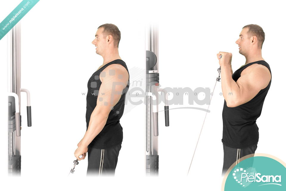Reverse Grip Curls Holding Bar Reverse Cable Curls