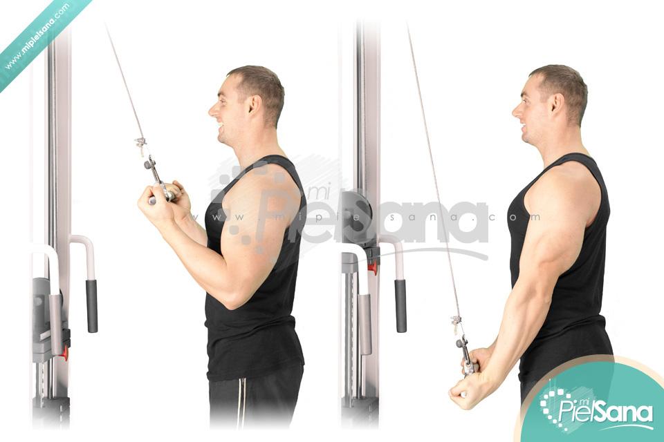 Cable Tricep Extension : Reverse grip cable tricep extension o extensión de tríceps
