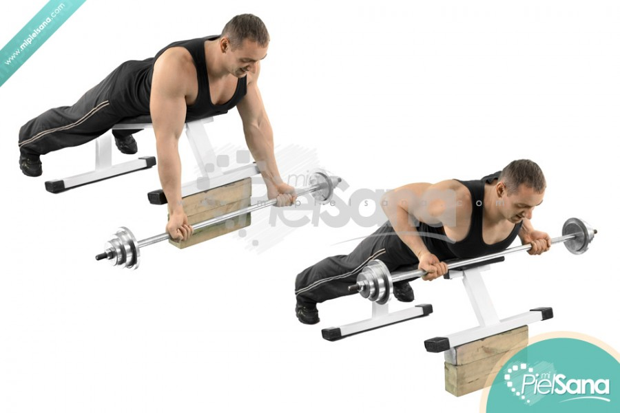 Reverse Grip Incline Bench Barbell RowReverse Grip Barbell Row
