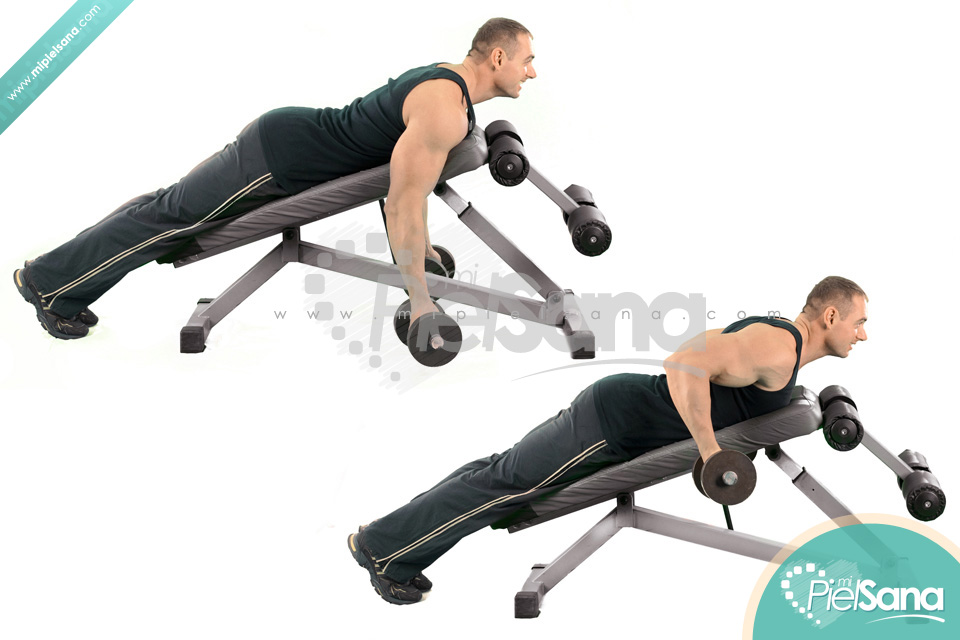 Reverse Grip Incline Bench Two Arm Dumbbell RowIncline Dumbbell Row