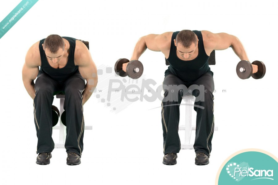 Seated Bent Over Dumbbell Reverse Fly