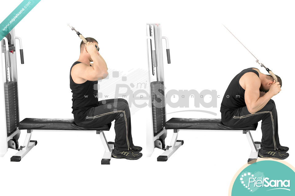 Seated Cable Crunch