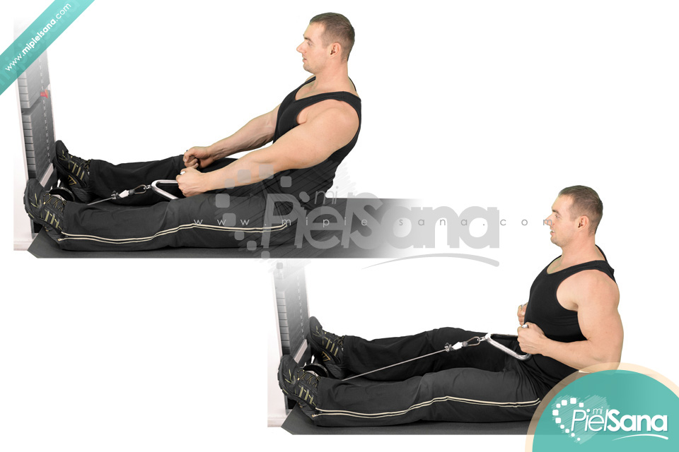 http://mipielsana.com/wp-content/uploads/2012/04/Seated-Cable-Row.jpg Seated Cable Row