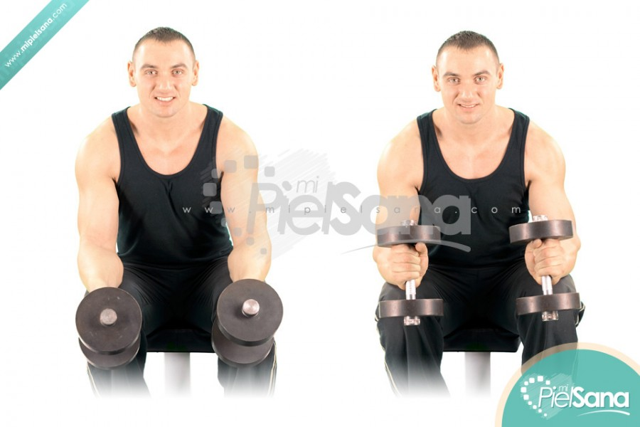 Seated Neutral Dumbbell Wrist Curl
