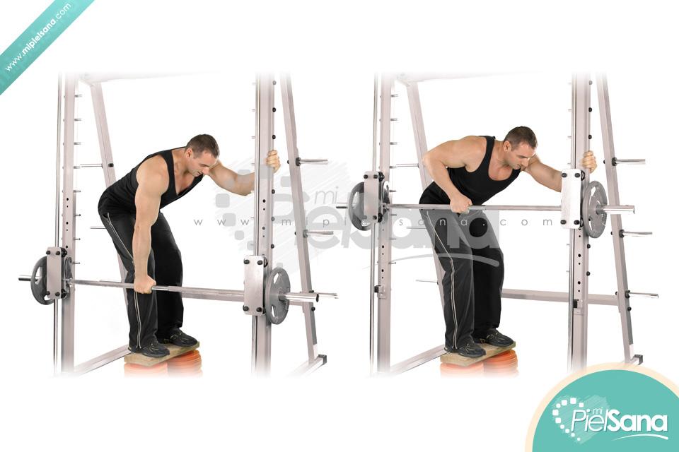 smith machine row