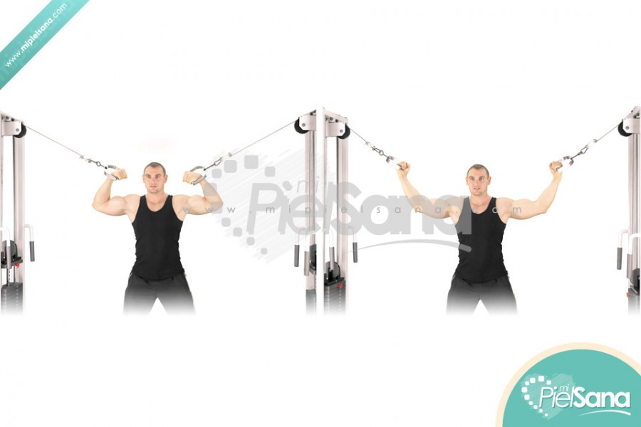 Standing High Pulley Cable Curl