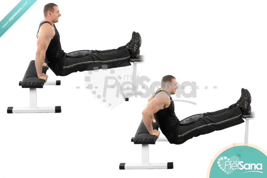Weighted Bench Dips